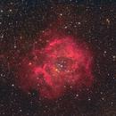 NGC 2244, Rosette nebula,                                Lepidopterous