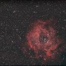 Rosette Nebula,                                Henry Shotwell