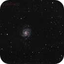 M101 ,                                Riccardo Crescimbeni