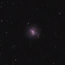 NGC4214,                                Andrei Ioda