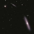 NGC 4216,                                Josef Büchsenmeister