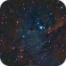 "NGC281 (IC11) ""Heart"" of the Pacman Nebula,                                brad_burgess"