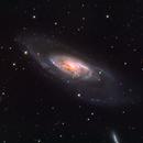 Akulapanam's M106,                                Jon Rista