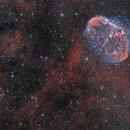 NGC 6888 Crescent Nebula & PN G75.5+1.7 Soap Bubble Nebula Bicolor,                                Frank Iwaszkiewicz