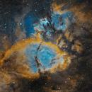 IC 1795 Fish Head Nebula,                                Ferrante Enriques