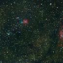 Trifida y Laguna,                                Wilmari