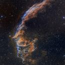 Eastern Veil Nebula - Bicolor Image - Hubble Style - Two-panel Mosaic,                                Eric Coles (coles44)