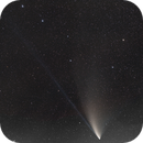 C/2020 F3 (NEOWISE) in  Big Dipper,                                Piotr Dzikowski