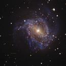 M83 unguided.,                                Juan Pablo (Observatorio JuPiTeR)