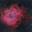 NGC 2244,                                  Leo Shatz