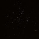 M41,                                Goddchen