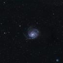 M101 - Pinwheel Galaxy,                                Benjamin Barre