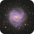 M83 - Southern pinwheel galaxy,                                Andreas Reifke