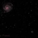 M101,                                Roberto Frassi