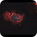 NGC1848 Soul and a bit of Heart colourized,                                Göran Nilsson