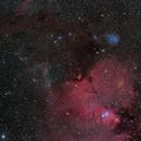 Cone Nebula, NGC 2245, Christmas Tree, Fox Fur, IC 446,                                1074j
