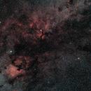 Cygnus Region,                                8472