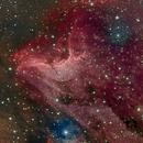 Pelican Nebula,                                angelo mazzotti