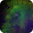 IC 1848,                                Dave Bloomsness
