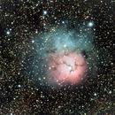 M20  The Trifid Nebula,                                Ray Heinle