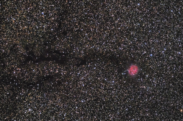 Cocoon nebula,                    paddy36