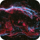 Bicolor Veil Nebula,                                Péter Feltóti