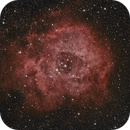 NGC2244 and Rosette Nebula,                                Peter