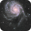 M101-16 hrs,                                Jonathan Young