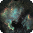 NGC7000 and Pelican widefield HaSIIOIII,                                Pat