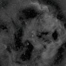 Sh2-264, Angel Fish Nebula, Ha,                                Stephen Garretson