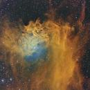Flaming Star Nebula,                                Bruce