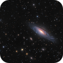 NGC 7331,                                Mike Miller