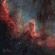 Cygnus Wall (NGC 7000, Caldwell 20, Sh-2 117),                                Gary Lopez