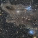 Ldn 1235 , Vdb 149 & Vdb 150 - Sharkhead Nebula,                                elvethar
