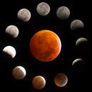 Eclipse Lunar 2019,                                Omar Martinez