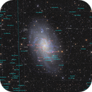 M33 Triangulum Galaxy,                                tommy_nawratil