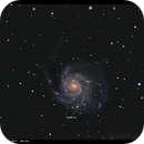 M101 & SN2011fe,                                Detlef Möller