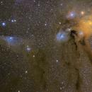 Rho Ophiuchi region,                                Christian van den Berge