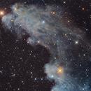 IC 2118 - Witch Head Nebula,                                remidone