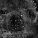 Rosette Nebula,                                dennis1951