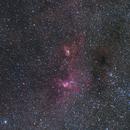 NGC3576 + NGC3603 - Statue of Liberty,                                  Astro-Wene