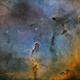 IC 1396 Elephant Trunk SHO,                                Randy Lindstrom