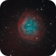 Abell 31 | SH2-290,                                Kevin Morefield