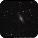 NGC 7331 - ein Experiment,                                Wolfgang Ransburg