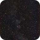 Witch Head Nebula With LPS-D1 Filter,                                Pat Darmody