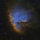 NGC 281,                                Gary Opitz