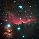 Horse Nebula,                                Davecr7