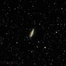 M82  Cigar Galaxy with M81 Bode's Galaxy,                                Paul Surowiec