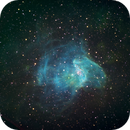 NGC346 in SMC,                                John Ebersole