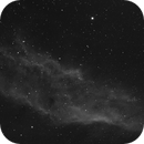 Mosaico H Alfa di NGC 1499 - -California Nebula,                                Maura Ingrosso